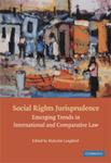 The Inter-American Court of Human Rights: Beyond Progressivity
